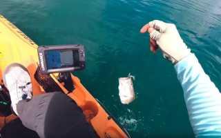 Эхолот для рыбалки с лодки: как и какой выбрать, принцип работы, как им пользоваться