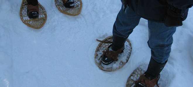 Снегоступы: виды, какие выбрать или как сделать своими руками