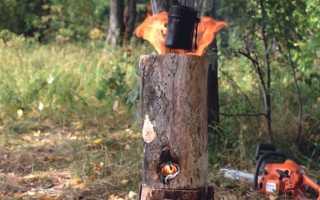 Костер финская свеча: как сделать, плюсы и минусы